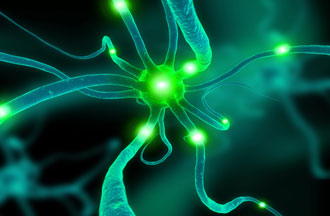 Fiction and Neuroscience – Guest post by author Trina St. Jean